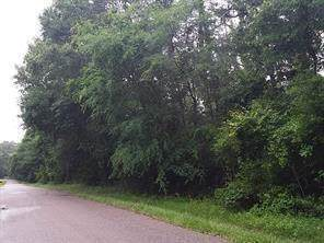 TBD Pinebrook, New Caney, TX 77357 (MLS #98771084) :: The SOLD by George Team
