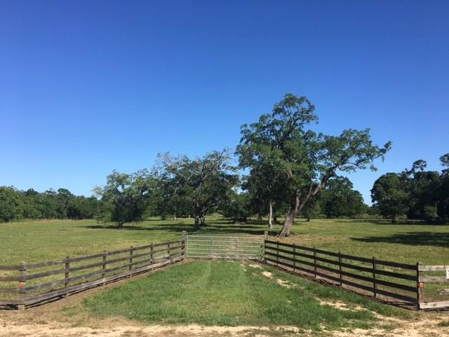 400 County Road 728B, Sweeny, TX 77480 (MLS #98794503) :: The Jill Smith Team