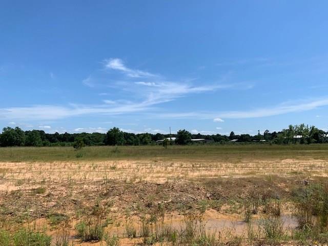 20208 Tealpointe Ridge Lane, Tomball, TX 77377 (MLS #13134963) :: Giorgi Real Estate Group