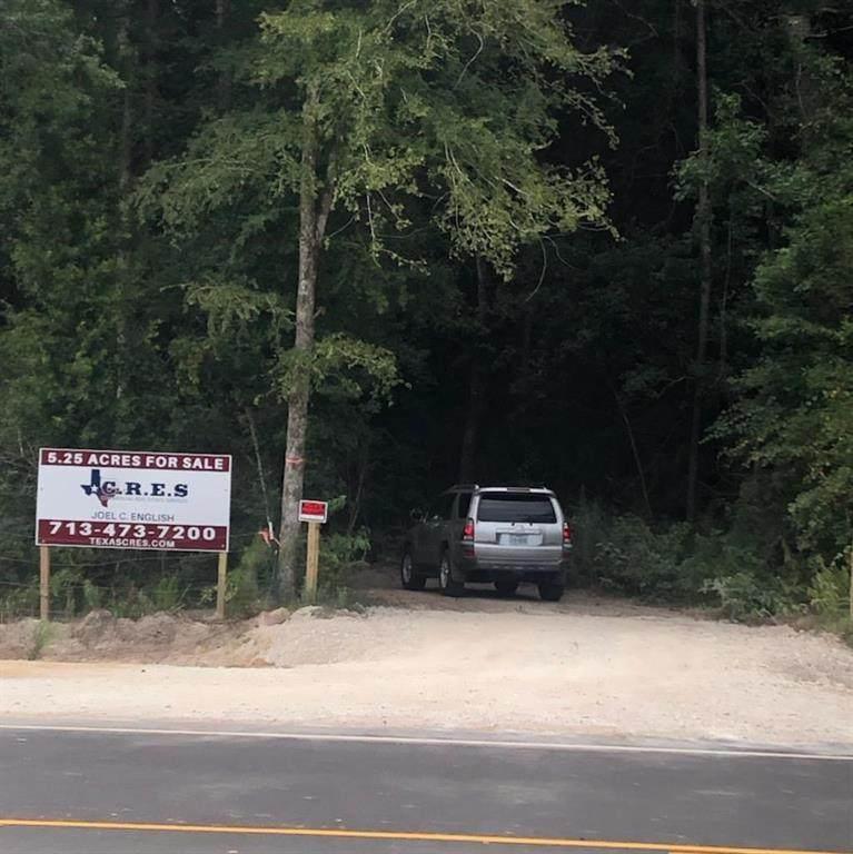 25776 Grand Pines Drive - Photo 1