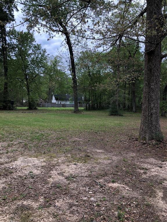 0 Hummingbird Street, New Caney, TX 77357 (MLS #19661493) :: Magnolia Realty