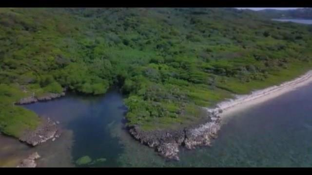 0000 Media Luna Resort Road, Roatan, TX 00000 (MLS #20484858) :: Fairwater Westmont Real Estate