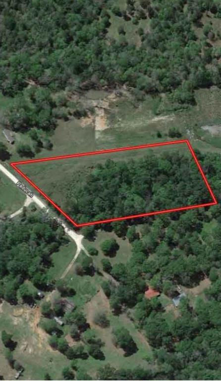 431 Paducah, Leggett, TX 77350 (MLS #23219225) :: Giorgi Real Estate Group