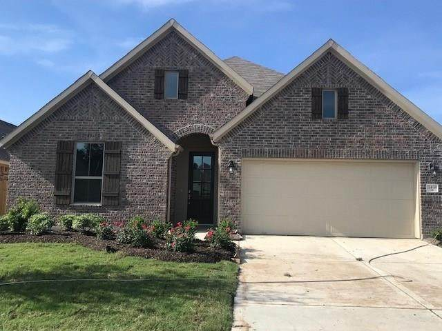 11438 Liger Drive, Tomball, TX 77375 (MLS #24323456) :: Ellison Real Estate Team