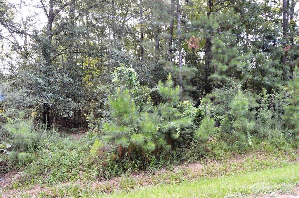 299 County Road 3311 - Photo 1