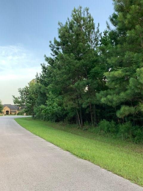 30232 Post Oak Run, Magnolia, TX 77355 (MLS #29674430) :: Giorgi Real Estate Group