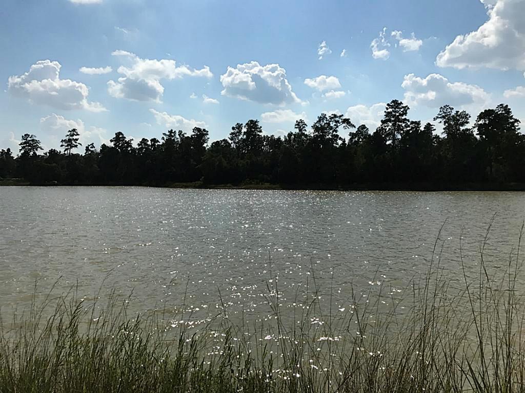 27571 Lazy Meadow Way - Photo 1