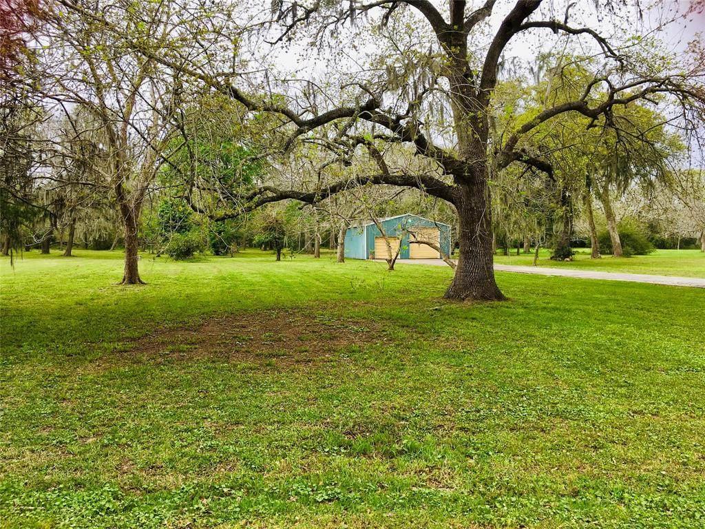 000 County Road 297 Oak Circle - Photo 1