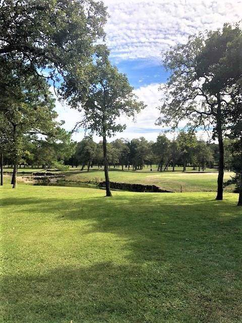 0 N North Falls Drive, New Ulm, TX 78950 (MLS #44853013) :: The Bly Team