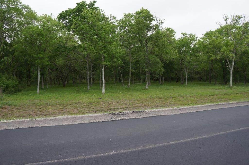 32118 Amberjack Drive - Photo 1