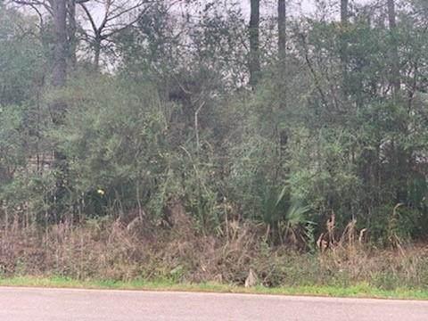 10308 Twin Oak Drive, Conroe, TX 77385 (MLS #46843022) :: The Home Branch