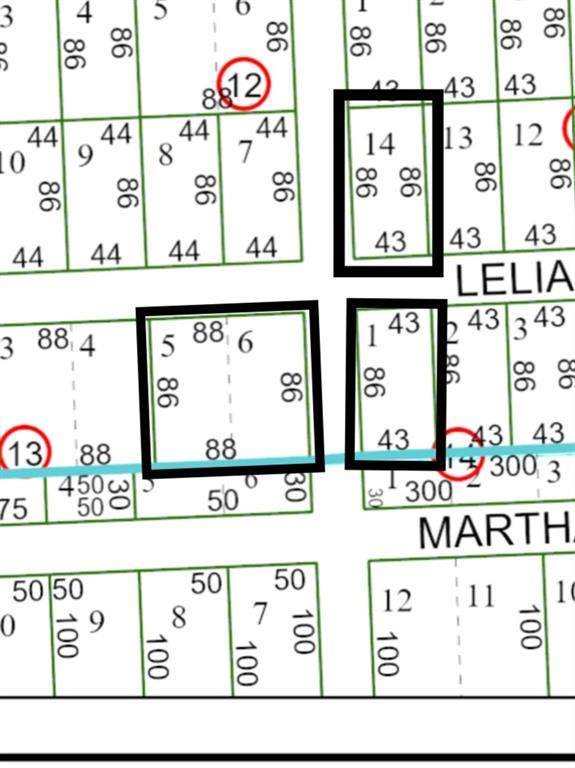 0 Lelia St Street, Houston, TX 77026 (MLS #58311078) :: Michele Harmon Team