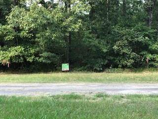 lot 33 Southland, Livingston, TX 77351 (MLS #60176559) :: Caskey Realty