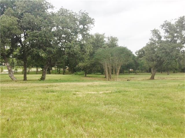 8503 Woods Hollow Trail, Fulshear, TX 77441 (MLS #61539353) :: Giorgi Real Estate Group