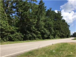 tr 94 Old Houston Road, Cleveland, TX 77302 (MLS #67660499) :: Magnolia Realty