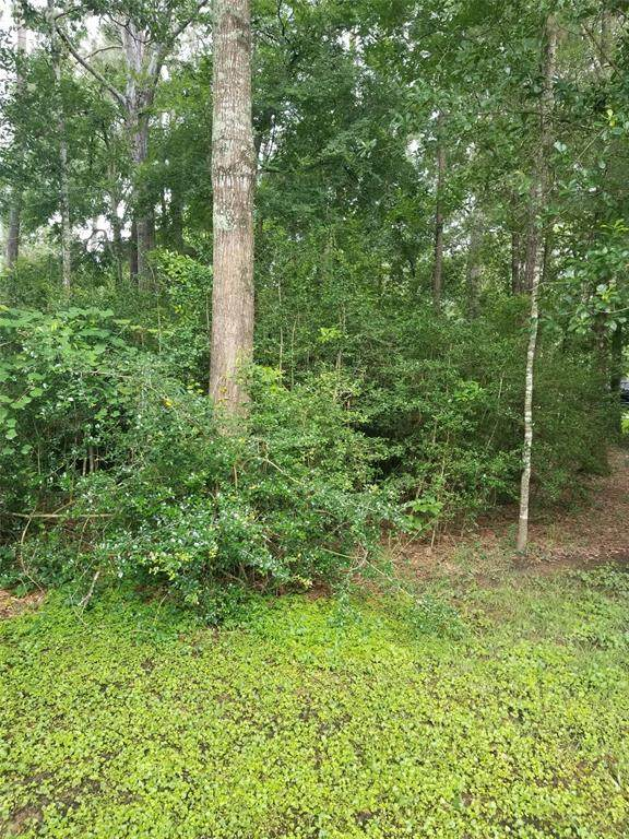 0 Charred Pine, Magnolia, TX 77354 (MLS #7262282) :: Ellison Real Estate Team