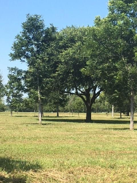 4726/4734 Riverbluff Court, Fulshear, TX 77441 (MLS #74074634) :: Texas Home Shop Realty
