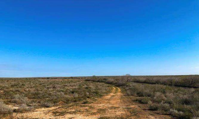 000 Highway 359 - Photo 1