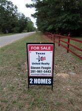 25450 Brushy Creek Drive, Hockley, TX 77447 (MLS #79102176) :: The SOLD by George Team