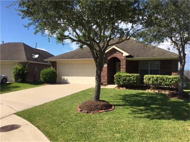 2542 Artesia Drive, Deer Park, TX 77536 (MLS #80257089) :: The SOLD by George Team