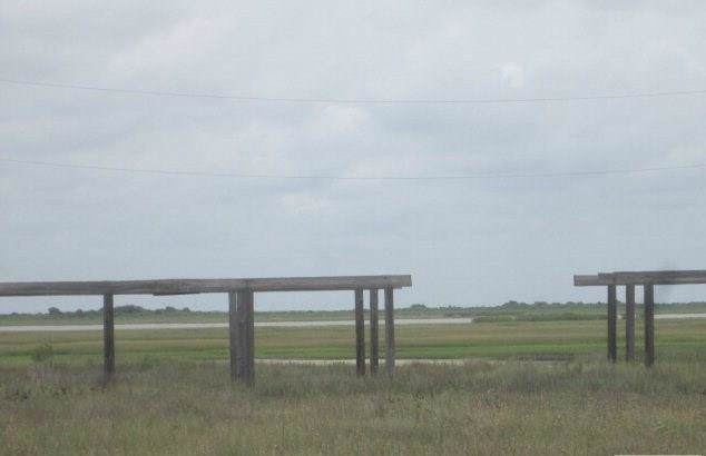 0 Lot 9, Palm St, Freeport, TX 77541 (MLS #81307891) :: Michele Harmon Team