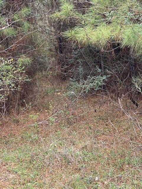 00000 Thomas Windt Road, Shepherd, TX 77371 (MLS #87352025) :: My BCS Home Real Estate Group