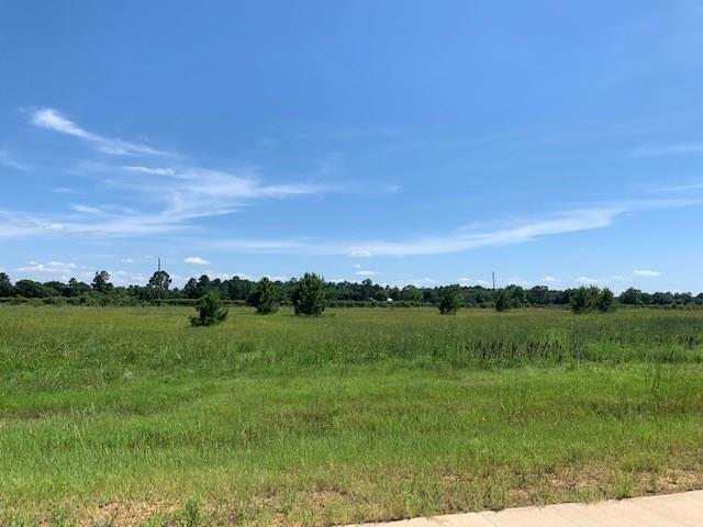 20403 Tealpointe Ridge Lane, Tomball, TX 77377 (MLS #89089913) :: Giorgi Real Estate Group