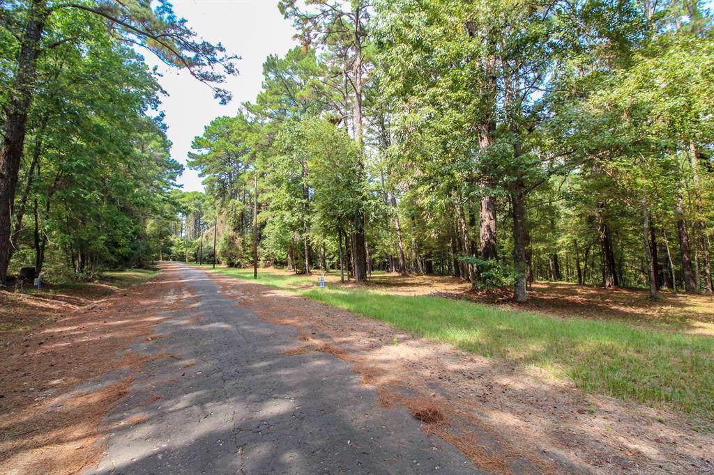 176 Grand Pine Loop - Photo 1