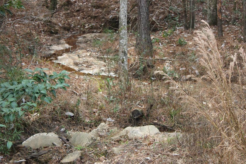 TBD Cross Creek 7 8 And 9 Trail - Photo 1