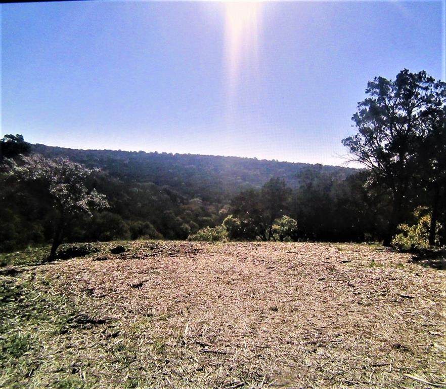 3101 Wolf Creek Ranch Road - Photo 1