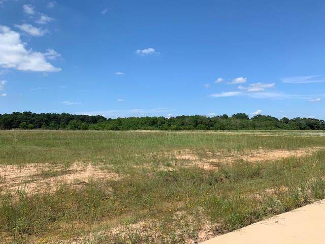 20410 Tealpointe Ridge, Tomball, TX 77377 (MLS #11411355) :: Giorgi Real Estate Group