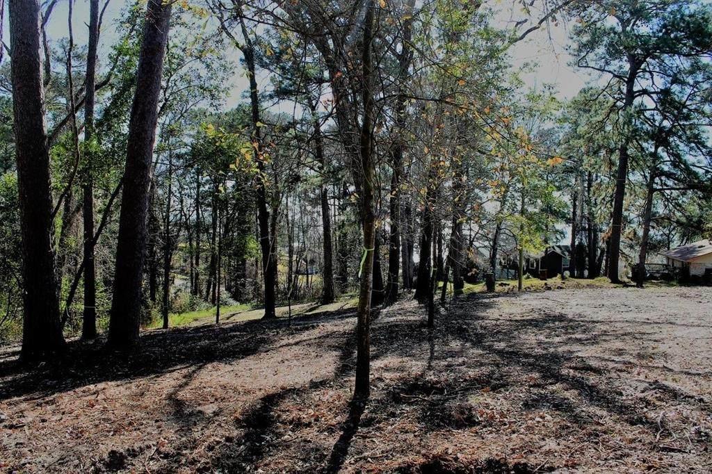 203 Pinemont Way - Photo 1