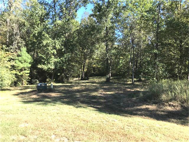 000 Hidden Oaks, Point Blank, TX 77364 (MLS #87572634) :: Mari Realty