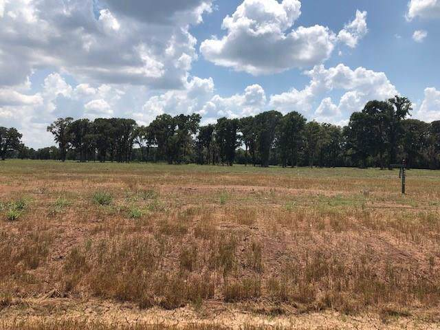 16 Riverlake Road, Fulshear, TX 77441 (MLS #45805860) :: The Parodi Team at Realty Associates