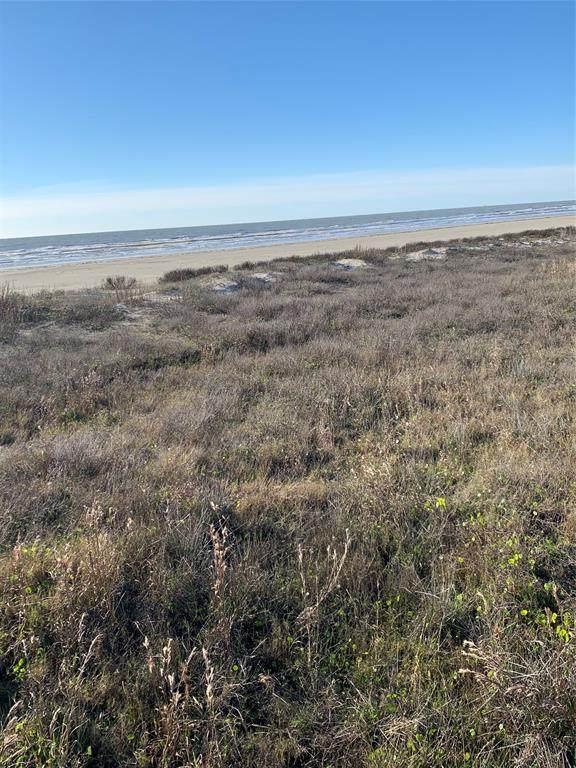 30 Grand Beach Boulevard Boulevard, Galveston, TX 77550 (MLS #62258509) :: Ellison Real Estate Team