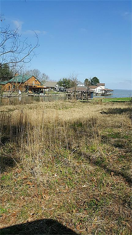 16 Harrell Cemetery Road, Coldspring, TX 77331 (MLS #77756504) :: The SOLD by George Team