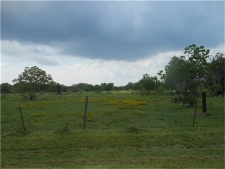 2254 County Road 356, Brazoria, TX 77422 (MLS #15488529) :: Texas Home Shop Realty