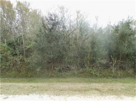 0 Riverside County Road, Angleton, TX 77515 (MLS #21776254) :: Giorgi Real Estate Group