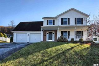 235 Ridgeview Drive, Marysville, PA 17053 (MLS #10294725) :: The Heather Neidlinger Team