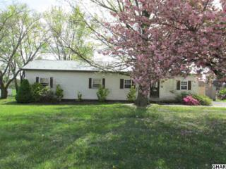 560 Middle Road, Newville, PA 17241 (MLS #10300812) :: The Heather Neidlinger Team