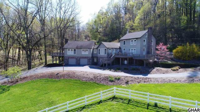 2221 Church Road, Hummelstown, PA 17036 (MLS #10303351) :: The Joy Daniels Real Estate Group