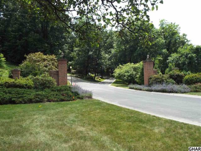 lot # 7 Carrington Court, Hummelstown, PA 17036 (MLS #10303428) :: The Joy Daniels Real Estate Group