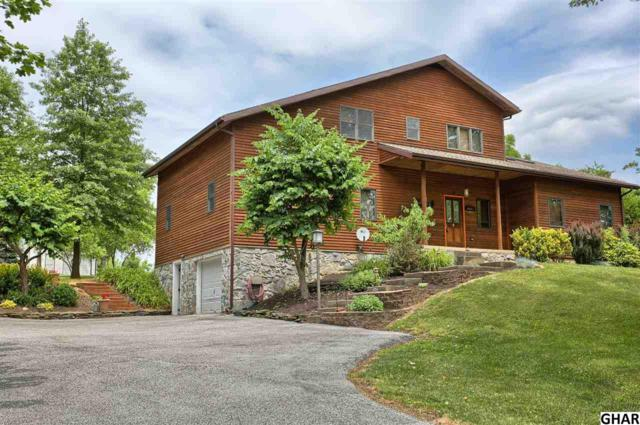 219 Old Cabin Hollow Road, Dillsburg, PA 17019 (MLS #10303520) :: The Joy Daniels Real Estate Group
