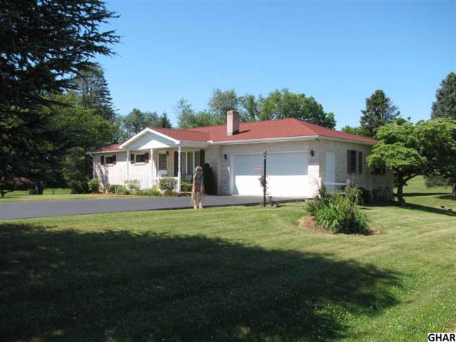 435 Adams Rs, Carlisle, PA 17015 (MLS #10303612) :: The Joy Daniels Real Estate Group