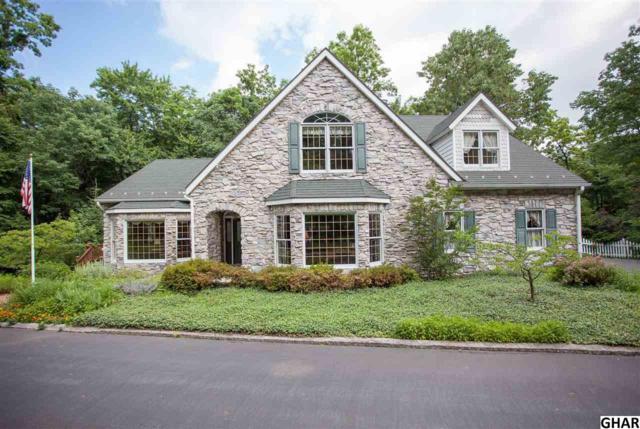 77 Sunset Lane, Palmyra, PA 17078 (MLS #10303660) :: The Joy Daniels Real Estate Group