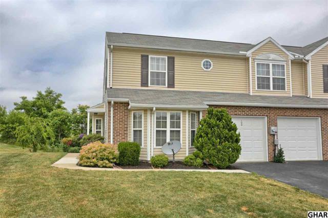 100 Kestrel Ct, Hummelstown, PA 17036 (MLS #10303685) :: The Joy Daniels Real Estate Group