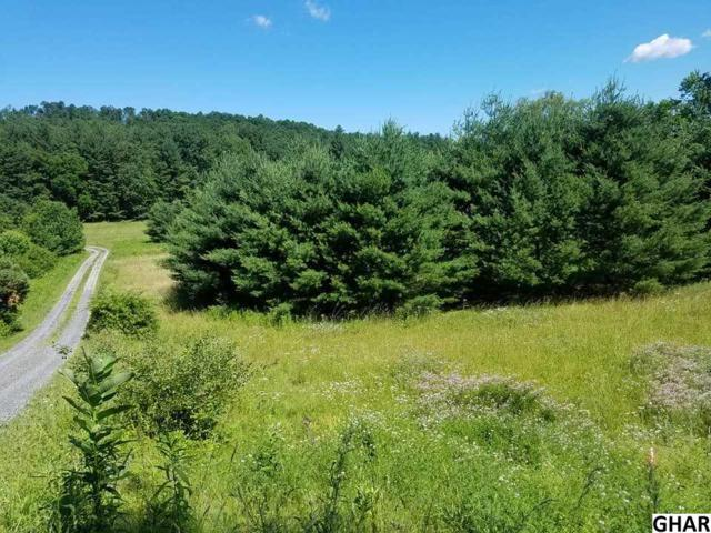 Lot 7 Sandy Hollow Road, New Bloomfield, PA 17068 (MLS #10303706) :: The Joy Daniels Real Estate Group