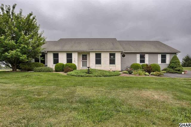 335 Thorley Rd, New Cumberland, PA 17070 (MLS #10303781) :: The Joy Daniels Real Estate Group