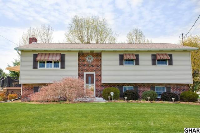 12 Hedge Row Lane, Carlisle, PA 17015 (MLS #10303826) :: The Joy Daniels Real Estate Group