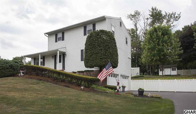 7 Parkside Drive, Hummelstown, PA 17036 (MLS #10303852) :: The Joy Daniels Real Estate Group